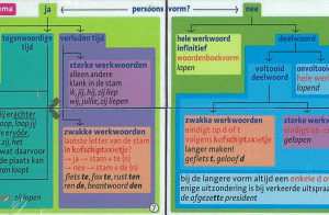 Zoobookoo Werkwoorden