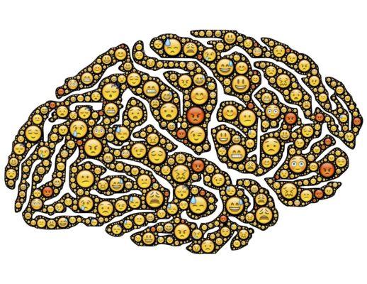 blijfwijs_brein
